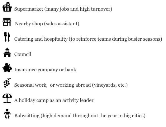 cv for summer job