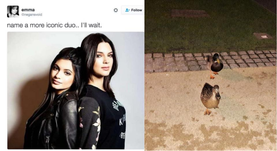 kylie kendall jenner ducks iconic duo