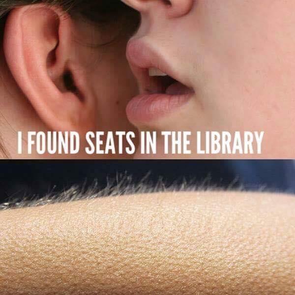 seats library lancaster study